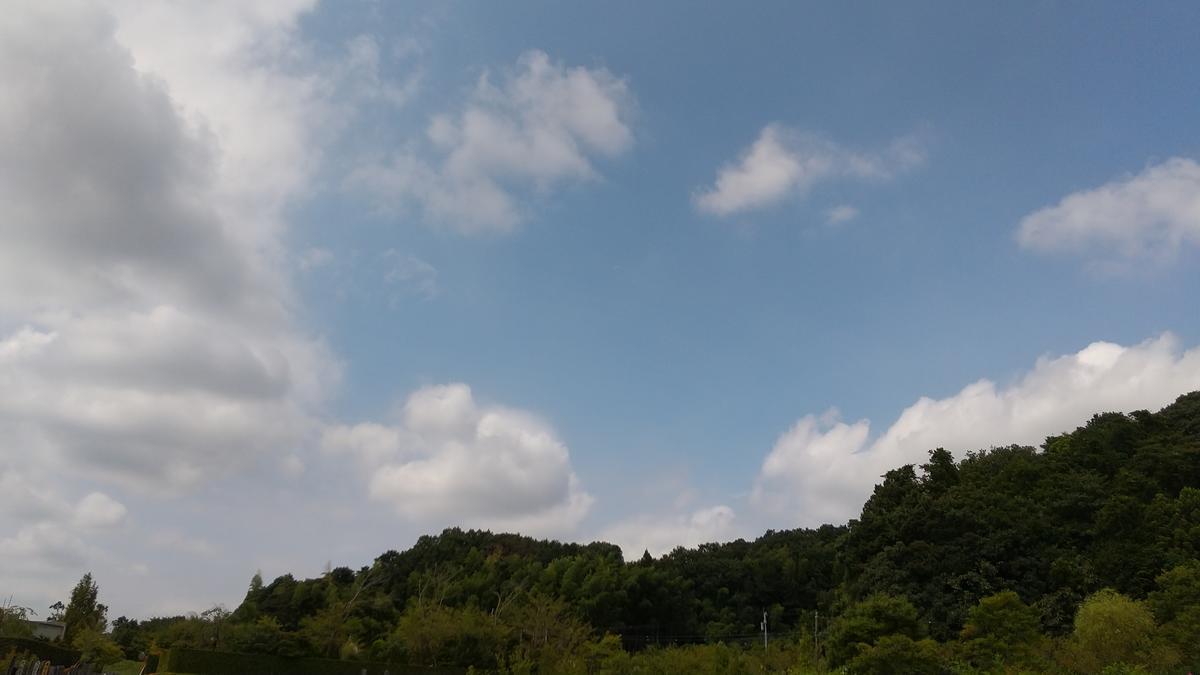 f:id:genta-san:20210831140527j:plain