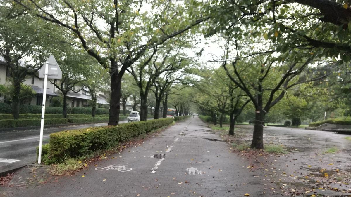 f:id:genta-san:20210903174745j:plain