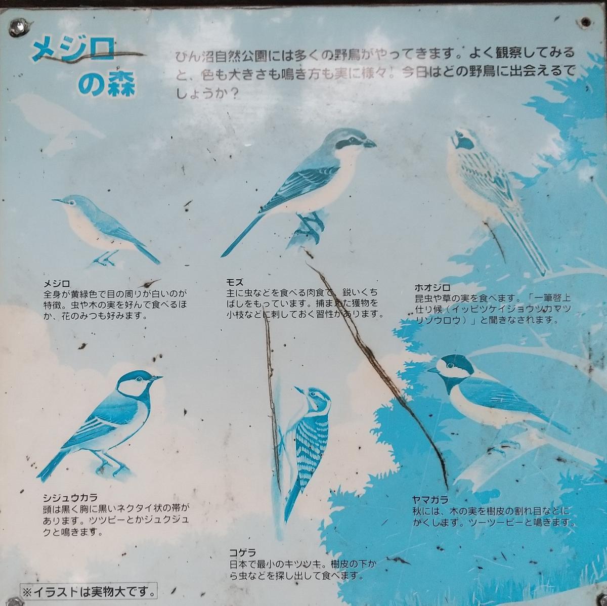 f:id:genta-san:20210911152132j:plain