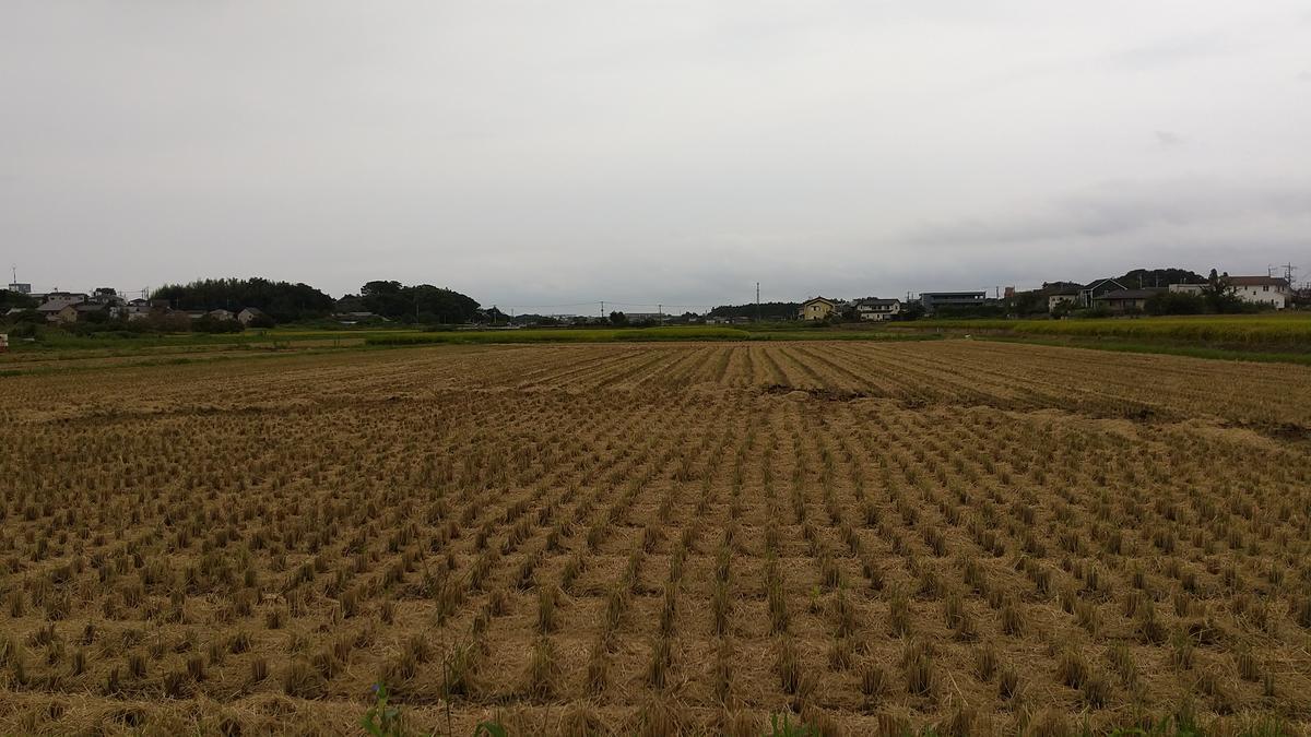 f:id:genta-san:20210914172307j:plain