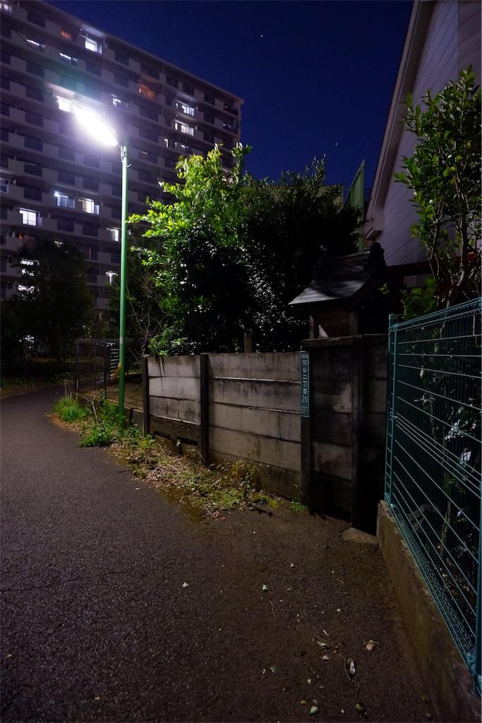 f:id:geo-koshi:20200204223210j:image