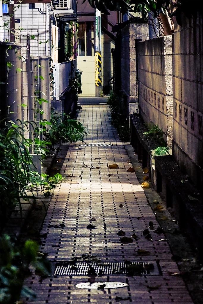 f:id:geo-koshi:20200920215351j:image