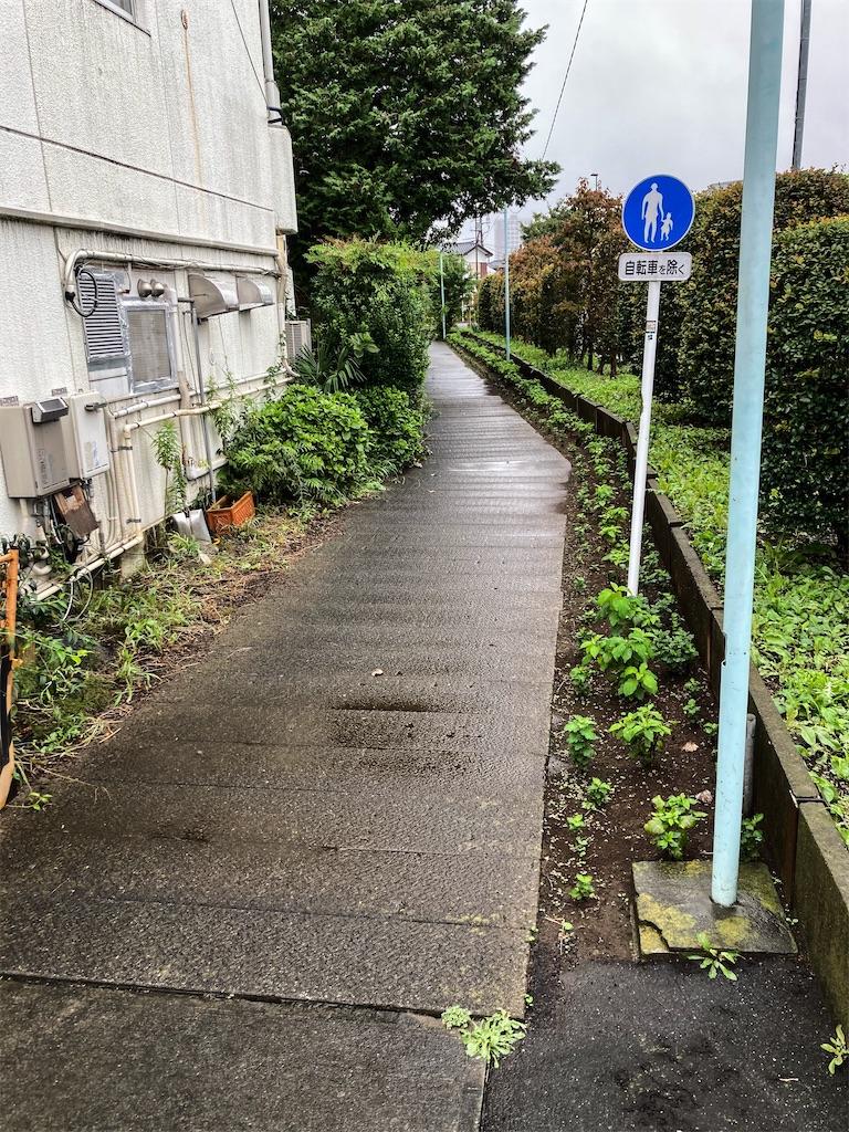 f:id:geo-koshi:20200926084935j:image