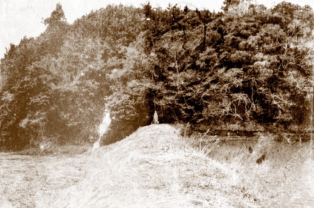 東生馬町の耳穴地蔵