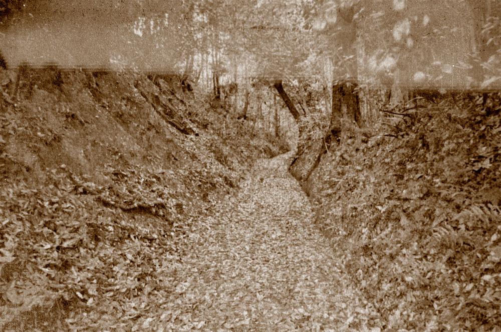 西川津町の旧道