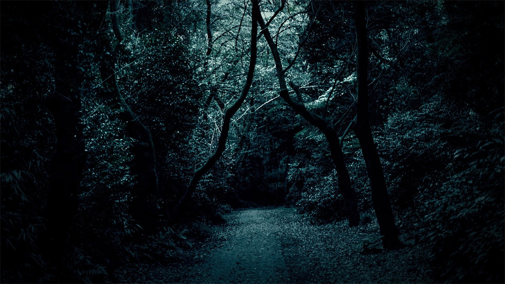 黒い儀式と白い儀式は、公衆便所を夢幻の楽園へと誘う為の魔術。