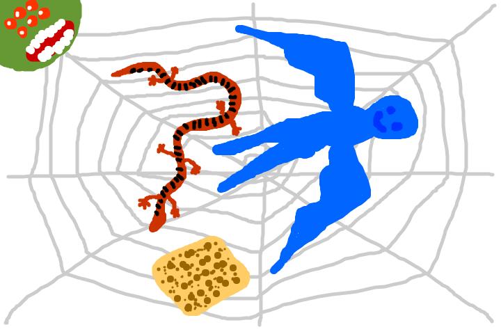 ジャイアントな蜘蛛の巣に、蛇と鳶と油揚げが捕まっていたヘミングウェイ日記