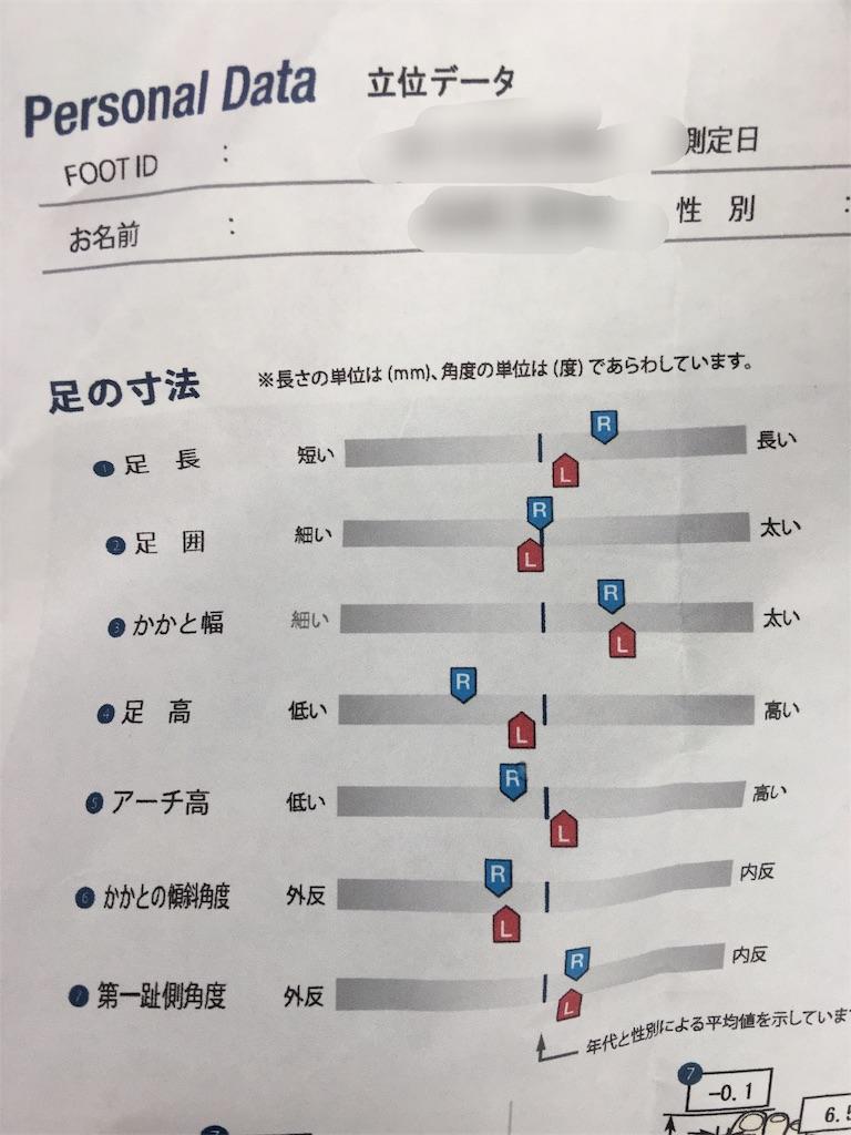 f:id:geshirui333:20171128103752j:image