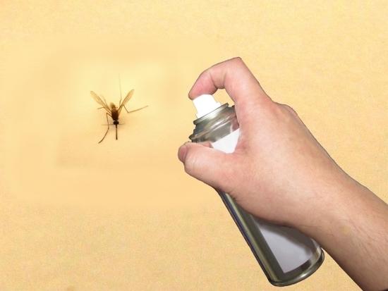 殺虫剤で虫を退治