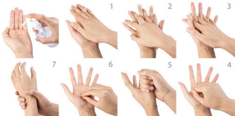 アルコールで手指の消毒方法