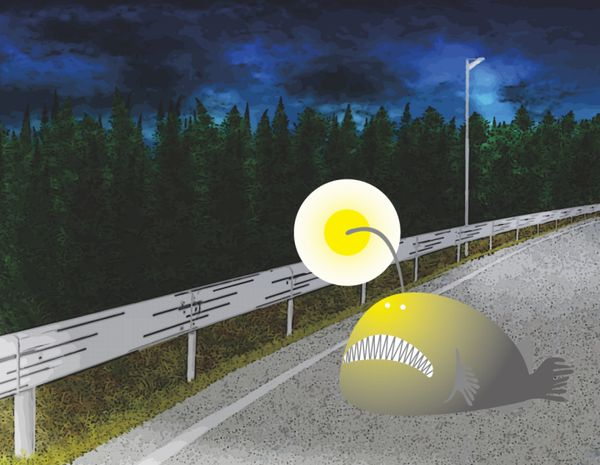 夜道にチョウチンアンコウのイラスト