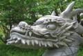 20130614_ドラゴンパーク3