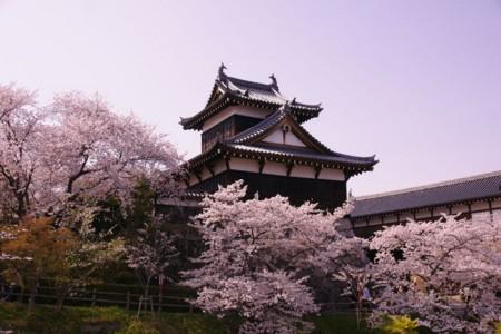 f:id:gigosyoku:20110410144350j:image