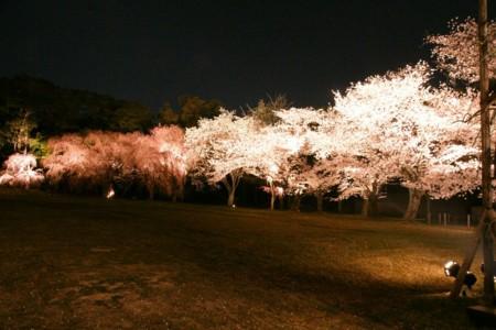 f:id:gigosyoku:20110410205940j:image