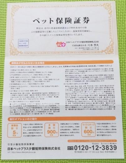 ペット保険証書(表面)