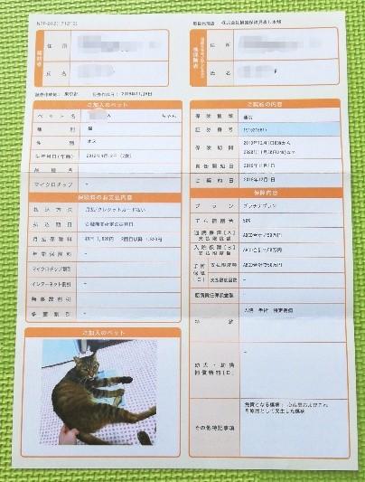 ペット保険証書(裏面)