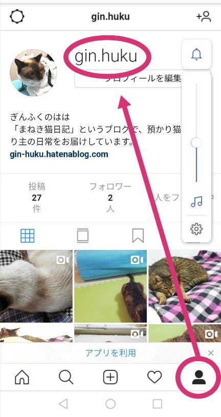 f:id:gin-huku:20191129191056j:plain