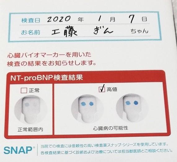 f:id:gin-huku:20200108153445j:image