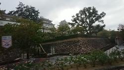 f:id:ginga_gakuin:20191008072149j:plain