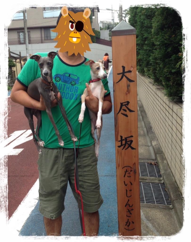 f:id:gino-ig:20160912221215j:image
