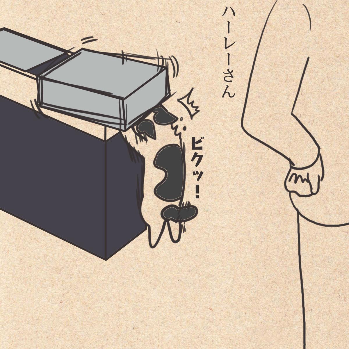 f:id:gintetutomi:20191208234207j:plain