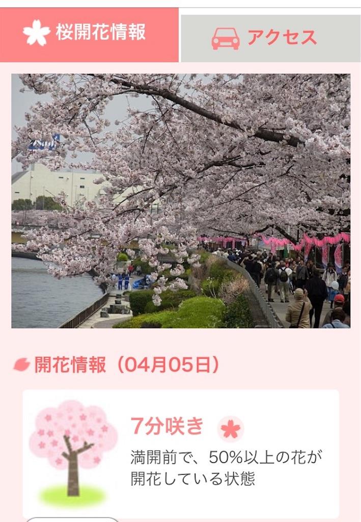 tenki.jp 開花情報