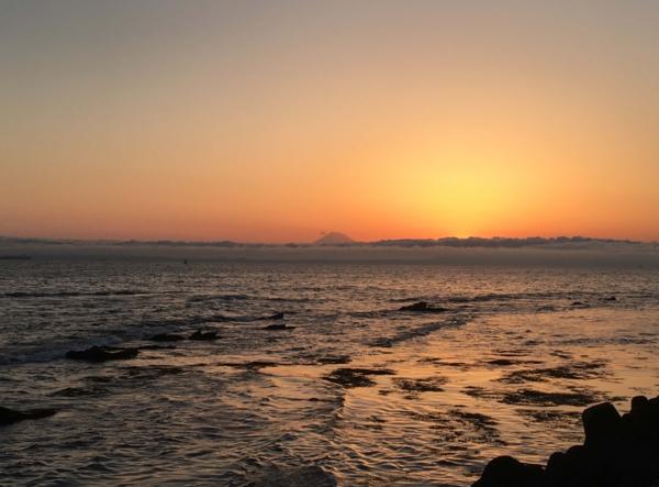 浜金谷の海