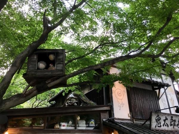 鬼太郎茶屋 屋根