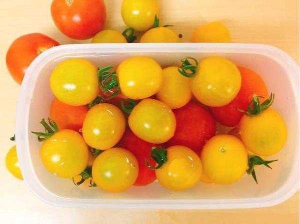 ミニトマト:冷蔵方法