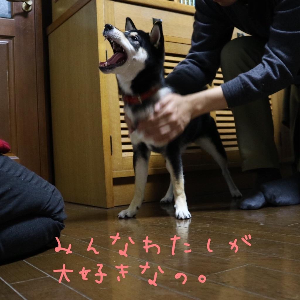 f:id:gizumiik:20161219182148j:image