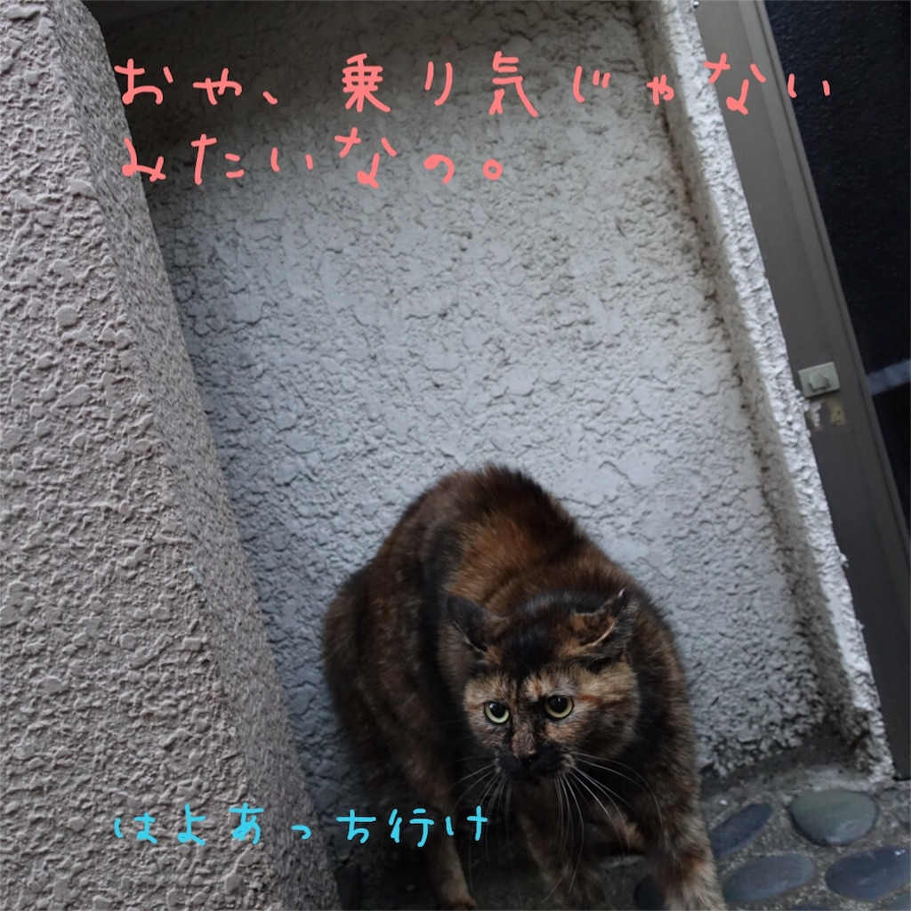 f:id:gizumiik:20170111175244j:image