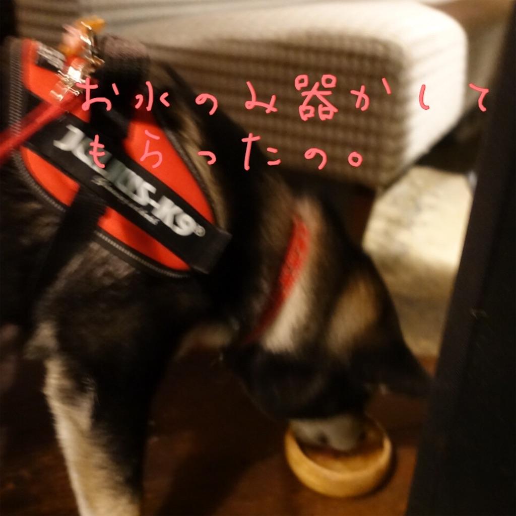 f:id:gizumiik:20170201180234j:image