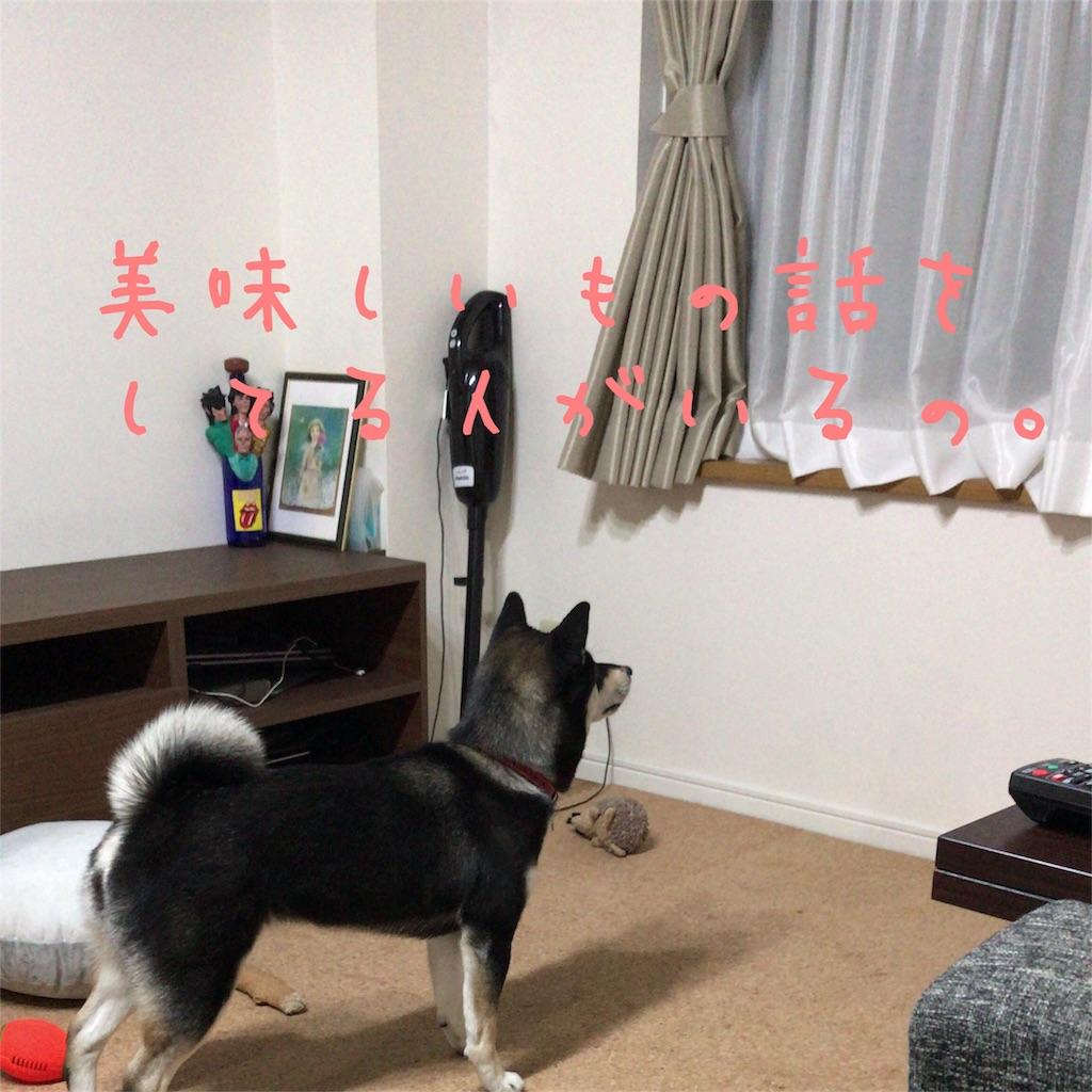 f:id:gizumiik:20170201192639j:image