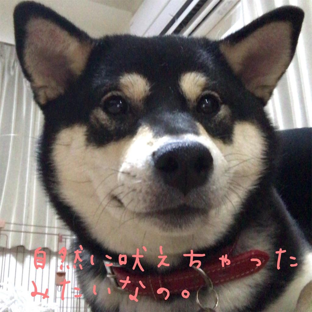 f:id:gizumiik:20170224021011j:image