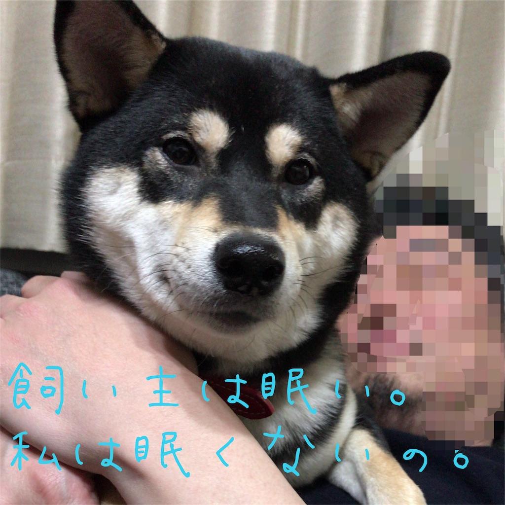 f:id:gizumiik:20170311031209j:image