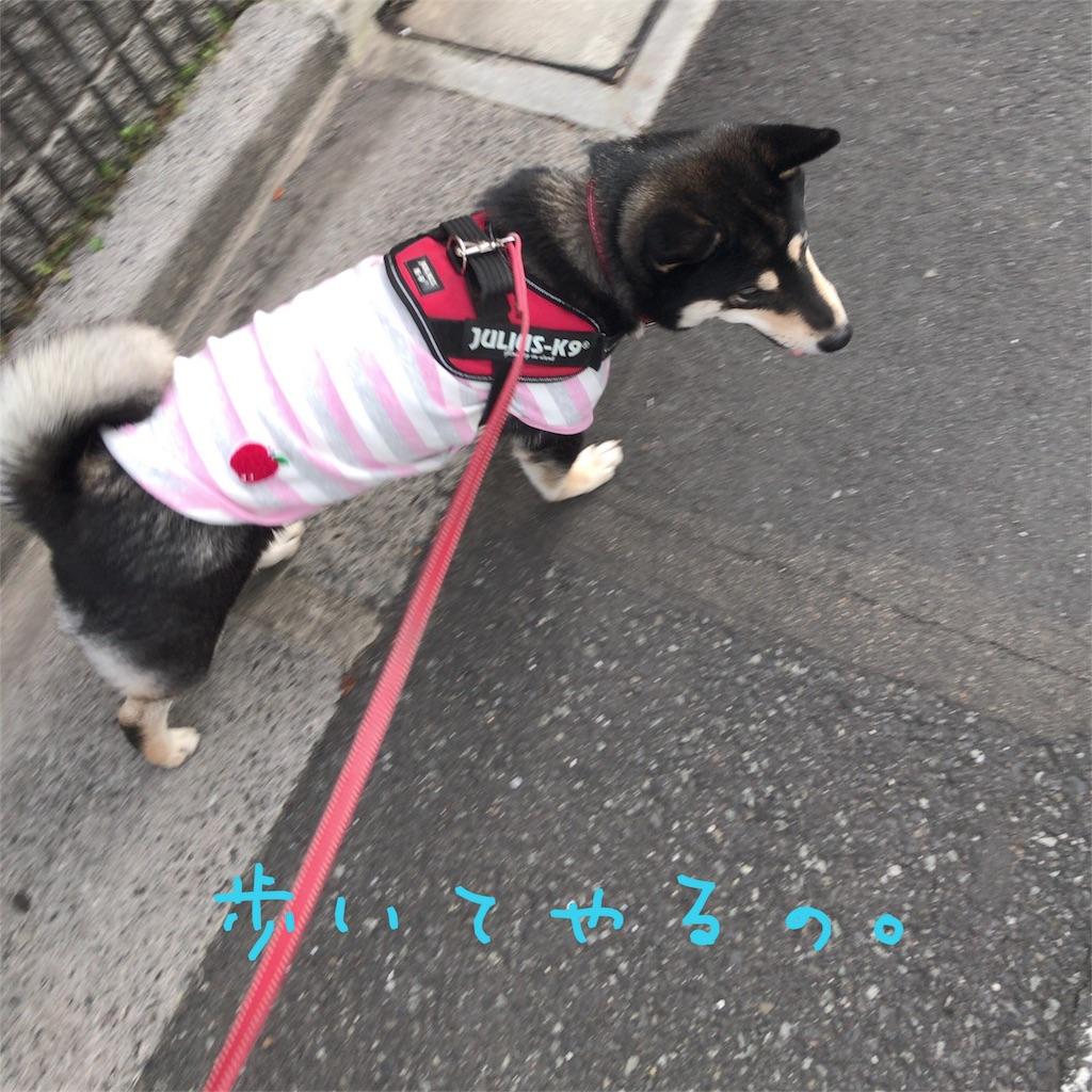 f:id:gizumiik:20170418205856j:image
