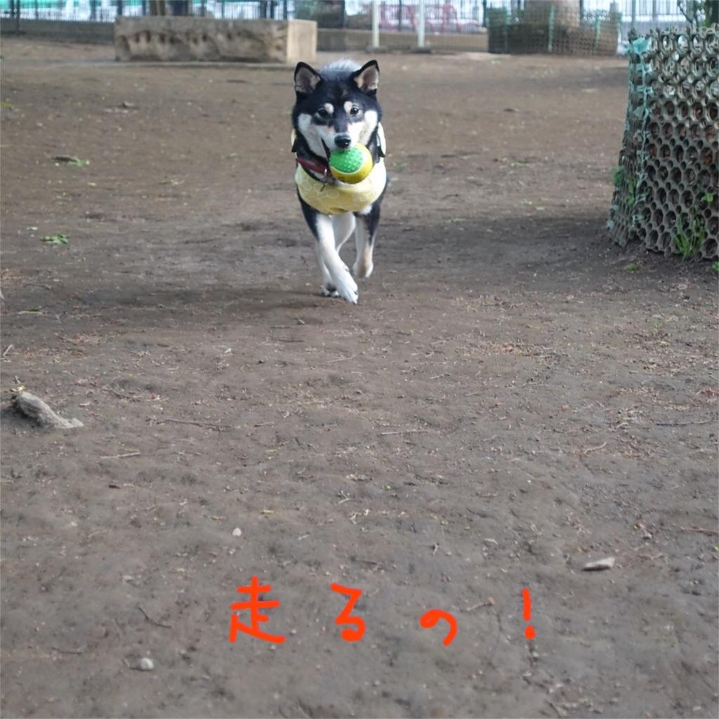 f:id:gizumiik:20170427203058j:image