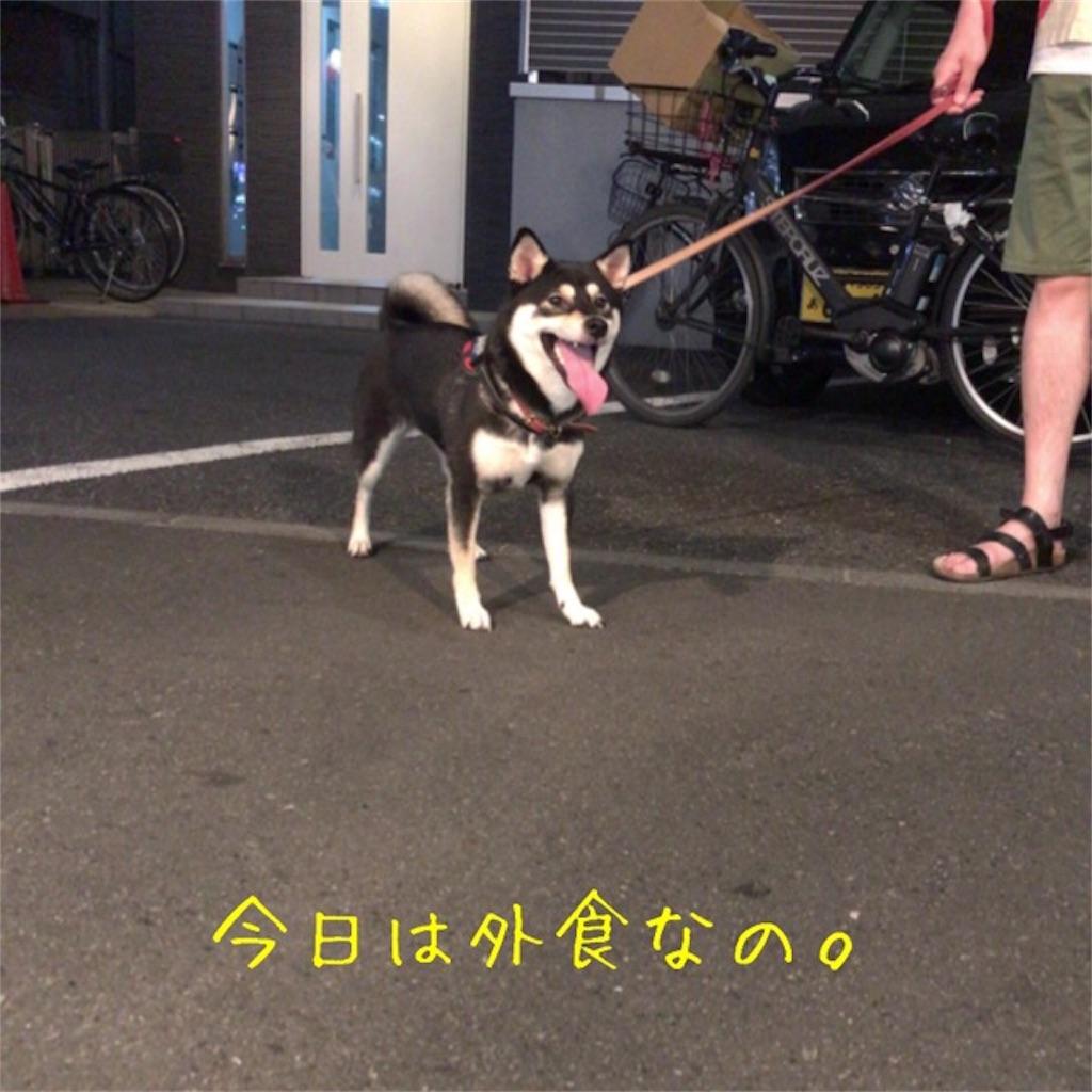 f:id:gizumiik:20170723000112j:image