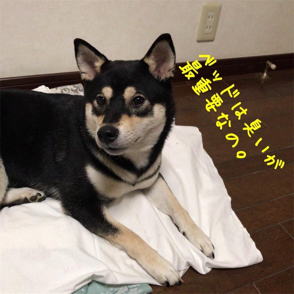 f:id:gizumiik:20170725002705j:image
