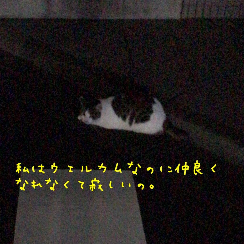 f:id:gizumiik:20170802005516j:image