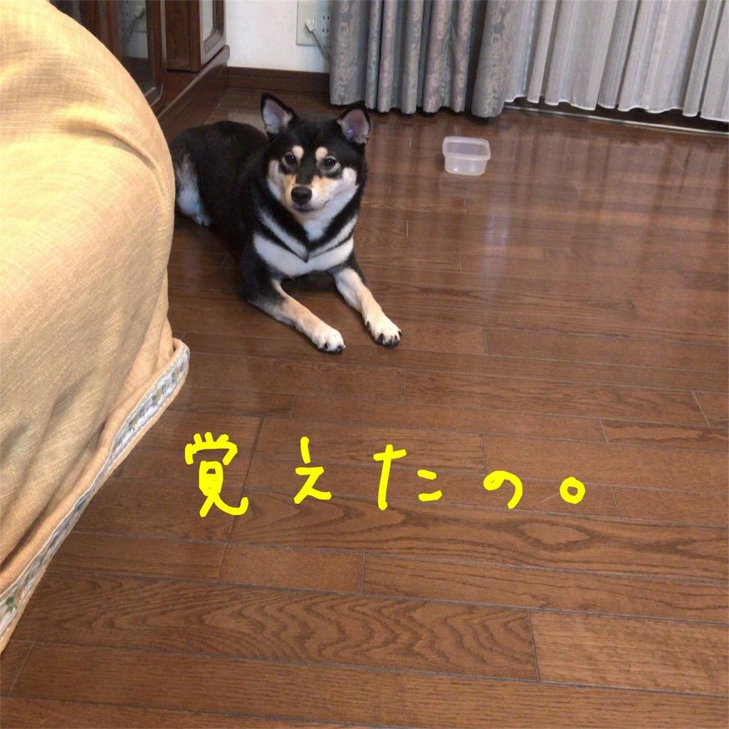 f:id:gizumiik:20170815125756j:image