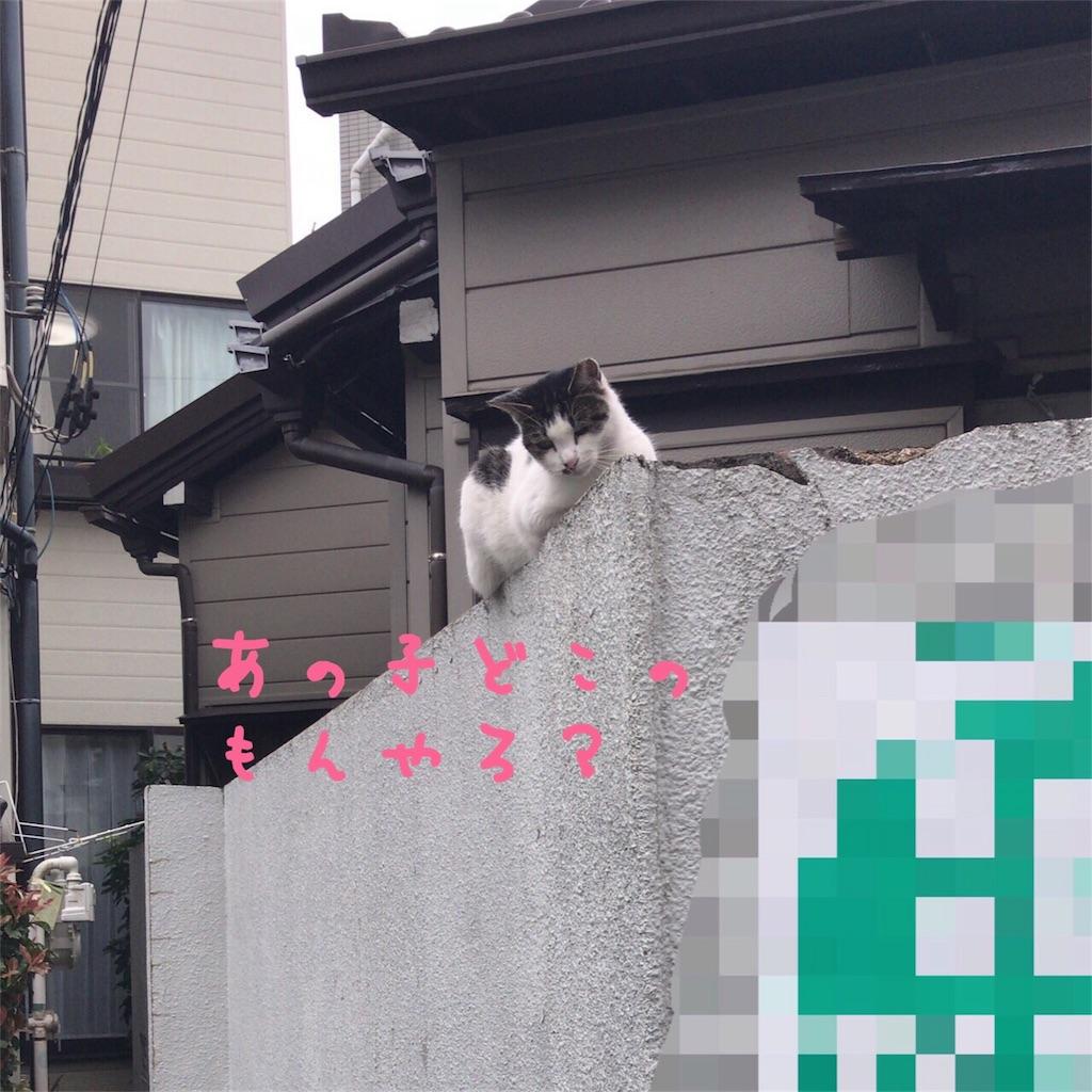 f:id:gizumiik:20170923180443j:image