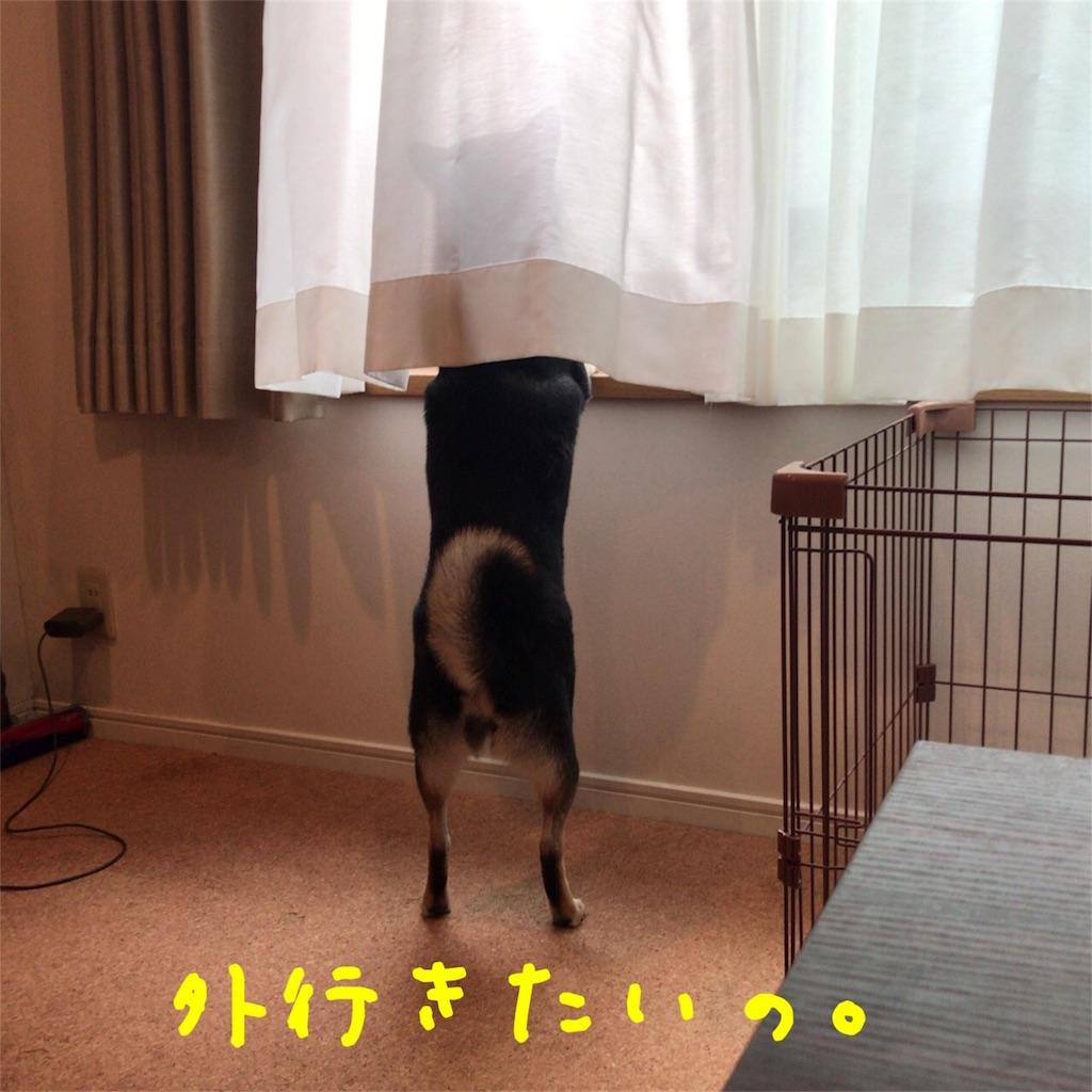 f:id:gizumiik:20171019000724j:image