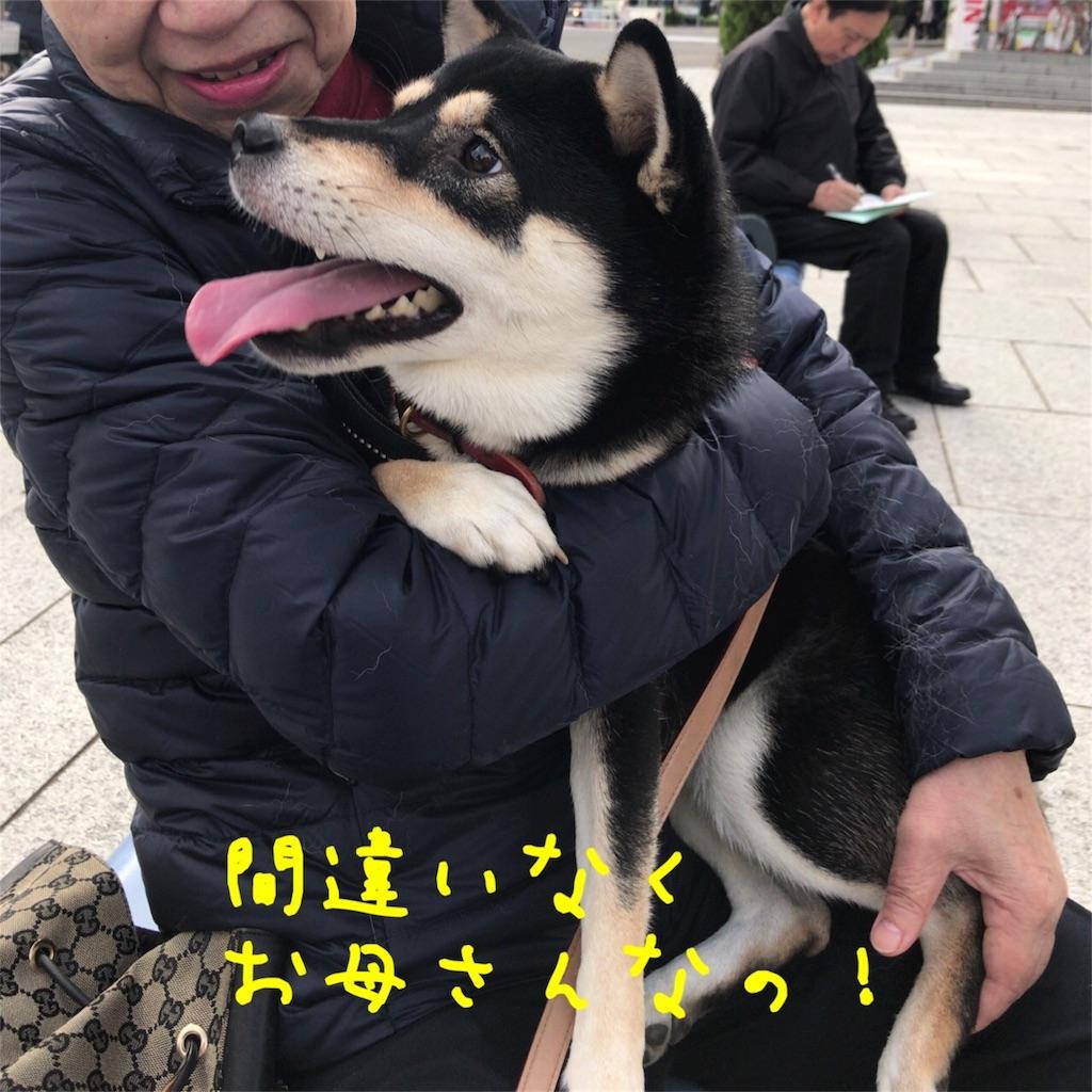 f:id:gizumiik:20171031174912j:image