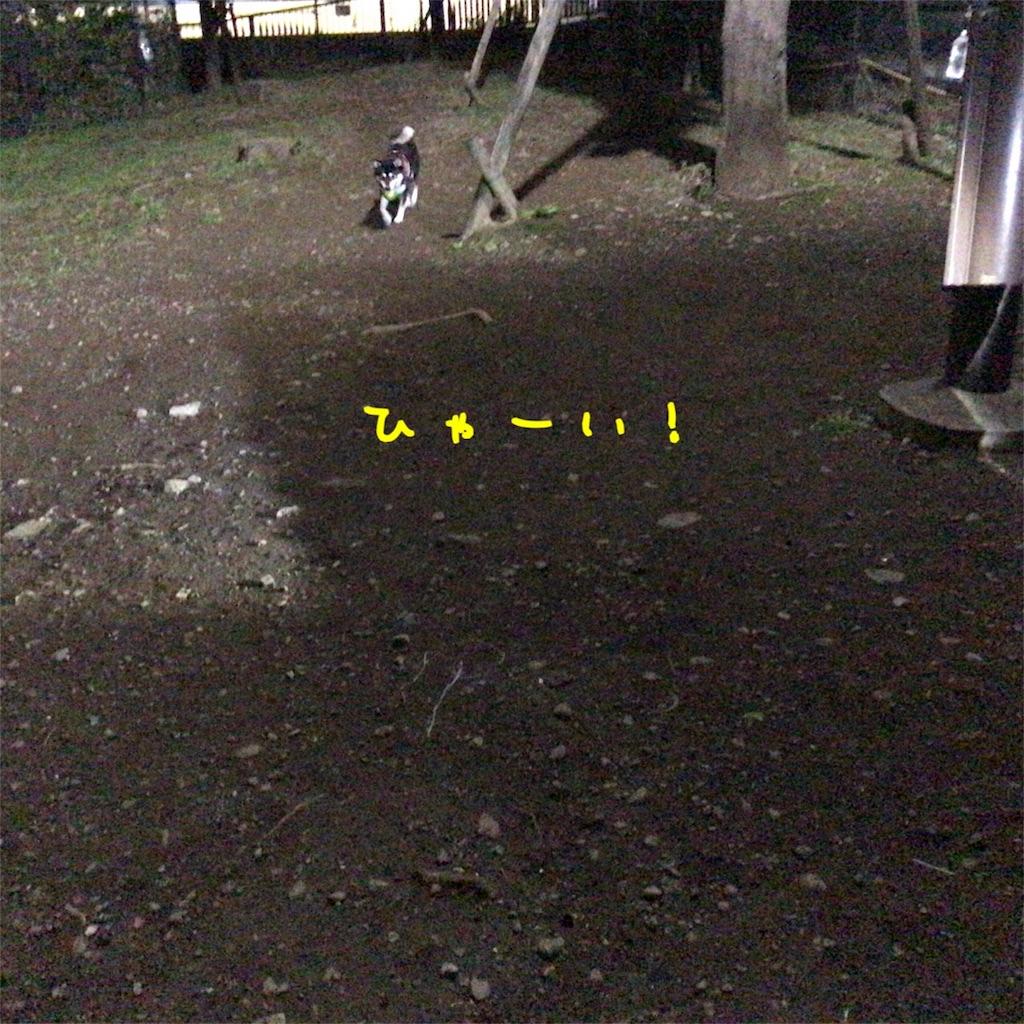 f:id:gizumiik:20171106000829j:image