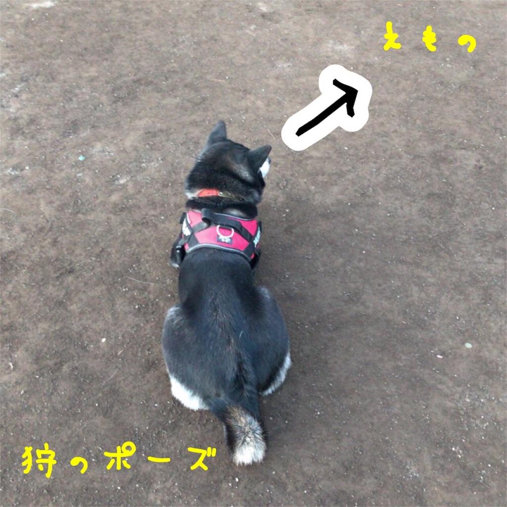 f:id:gizumiik:20180119205737j:image