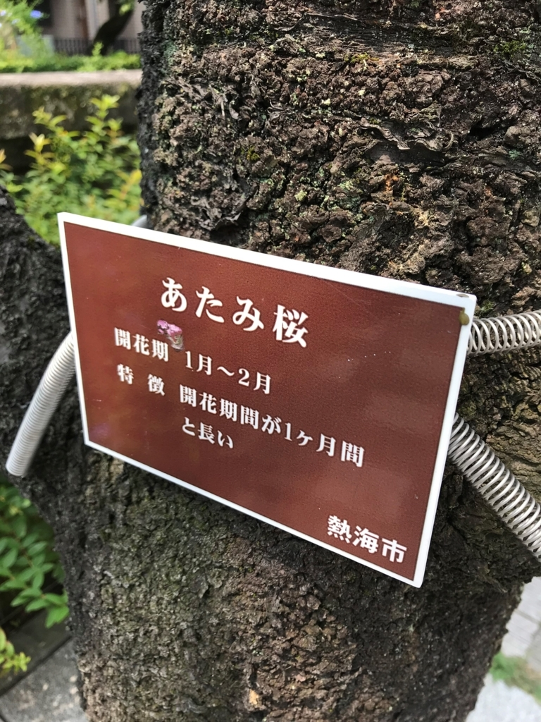 f:id:gk-murai33-gk:20180720142011j:plain