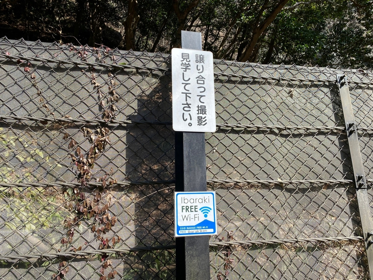 f:id:gk-murai33-gk:20210216091111j:plain