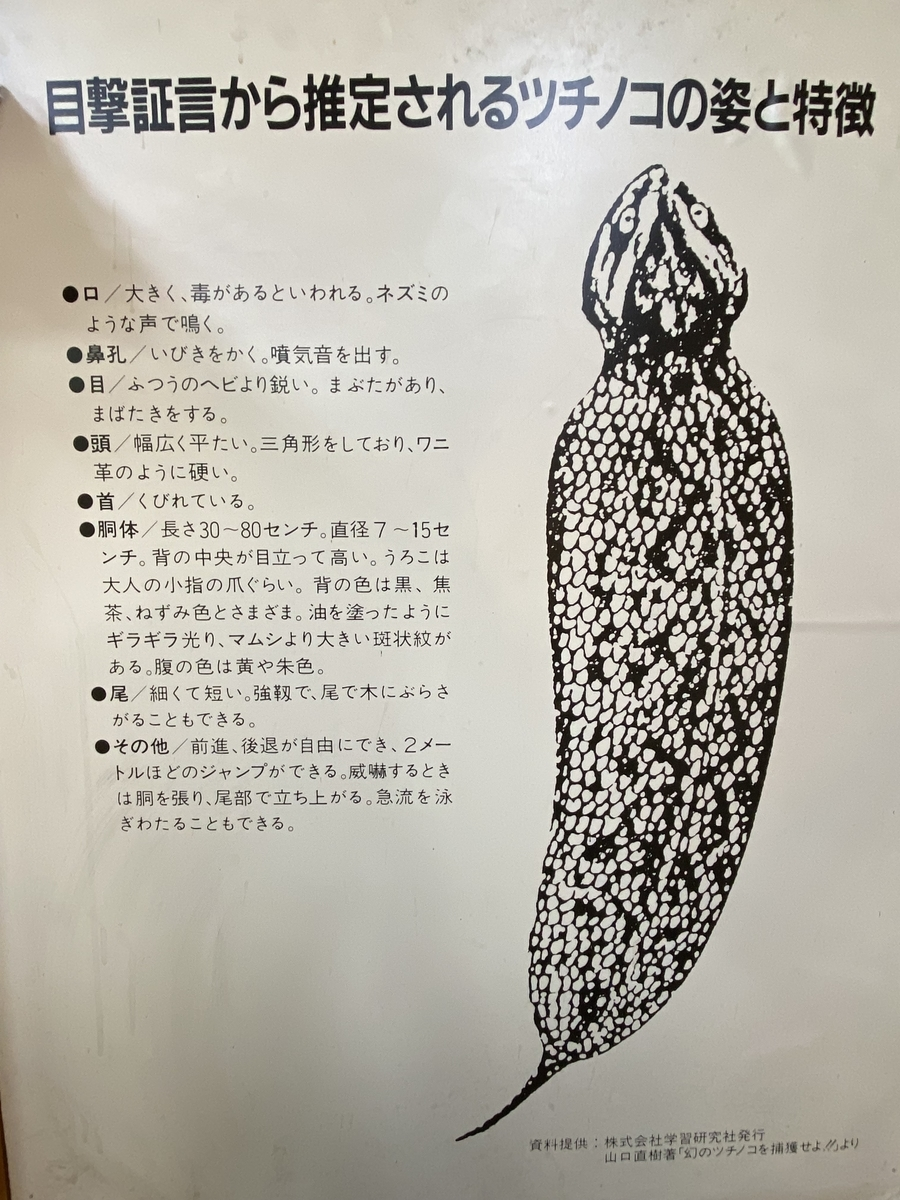f:id:gk-murai33-gk:20210527114322j:plain