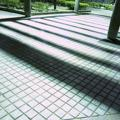 吉原公園(2)